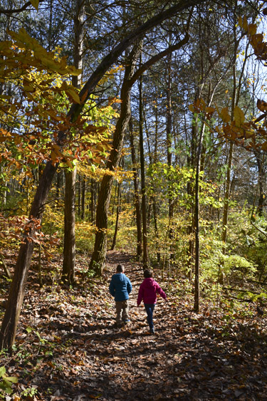 Bloomington's Best Outdoor Attractions for a Fun-Filled, Fall Weekend!