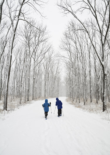 Indiana Hike of the Month: Harrison Trace Trail