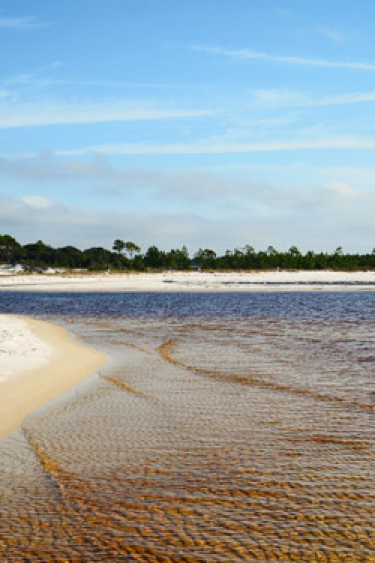 Lake Powell at Camp Helen State Park along Florida's 30A