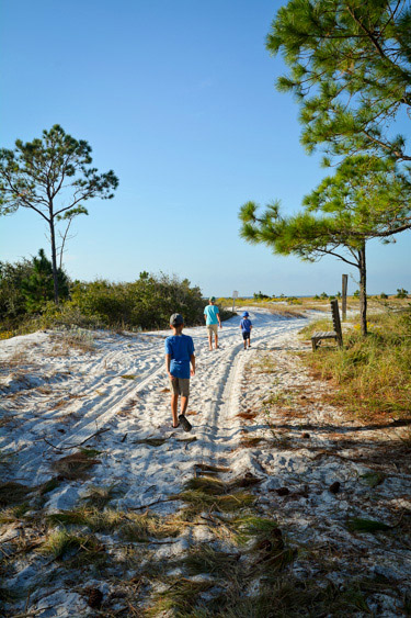 Beach Trail at Camp Helen State Park along Florida's 30A