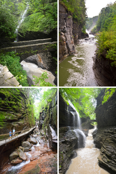 State Park Gorges