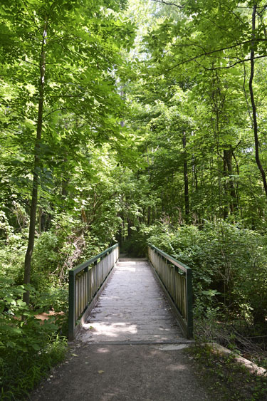 Indianapolis Outdoor Hiking Escapes: Cool Creek Nature Preserve