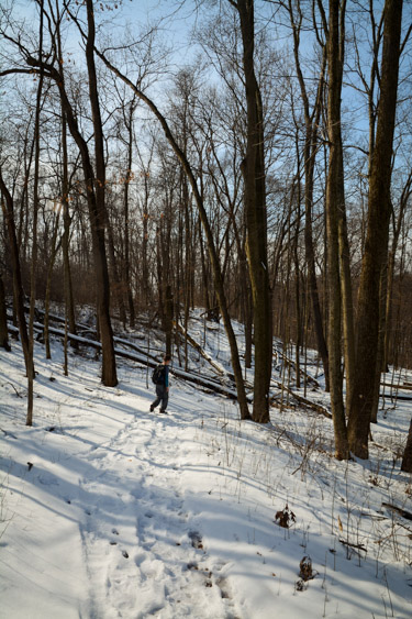 Hiking Indiana's Pokagon State Park Hell's Point Challenge
