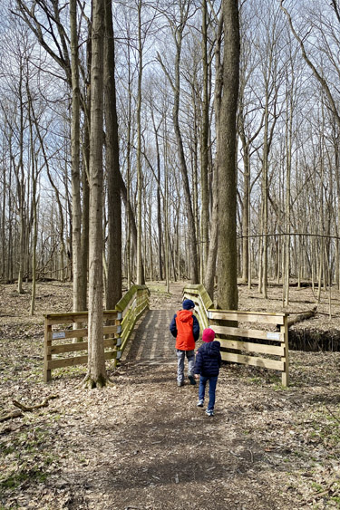 Indianapolis Outdoor Escape: Ritchey Woods Nature Preserve