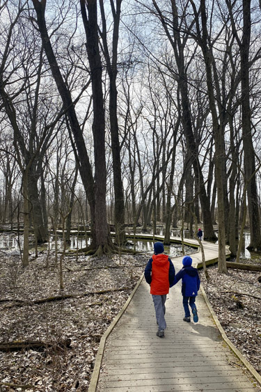 Hiking at Ritchey Woods Nature Preserve in Fishers, Indiana