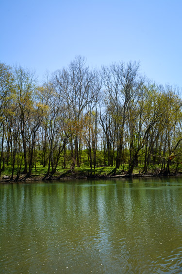 View of the White River from Southwestway Park