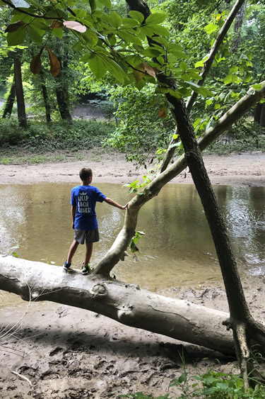 Indianapolis Outdoor Escapes: White River Greenway at Potter's Bridge Park