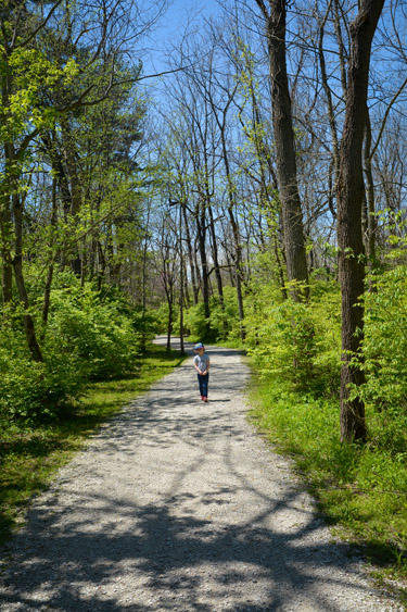 Indianapolis Outdoor HIking Escapes: Sodalis Nature Park