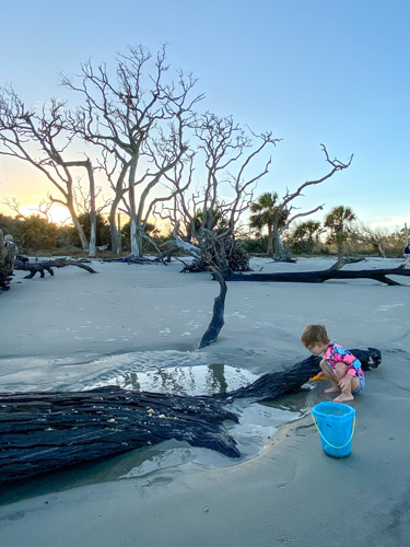 Girl playing in a tide pool at Driftwood Beach at dusk.