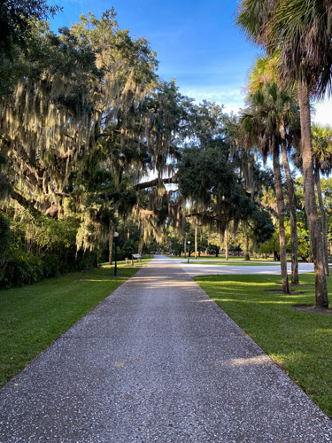 Pathway lined by live oak trees in Jekyll Island's Historic District.