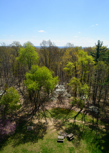 View from Brown County State Park Fire Tower during daytime.