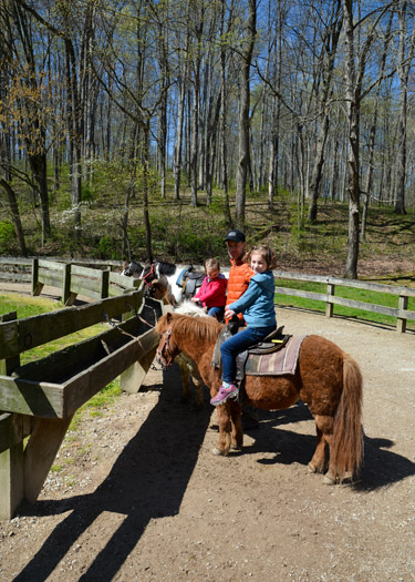 ad standing next to two daughters on ponies at Brown County State Park.