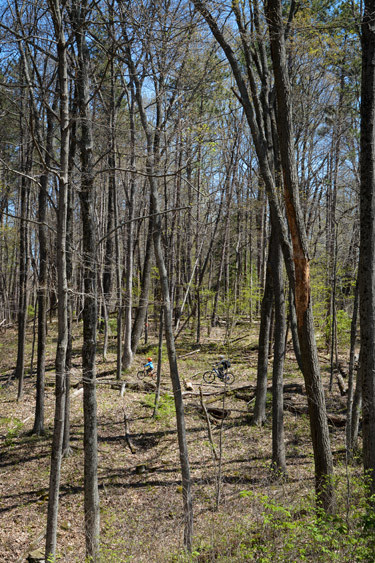 Mountain Bike Trail at Brown County State Park