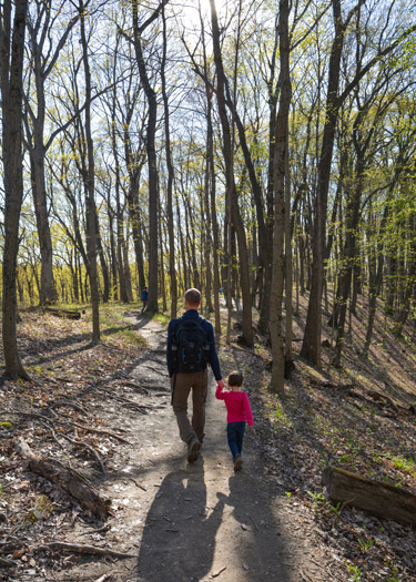 Hiking along Trail 4 in Brown County State Park