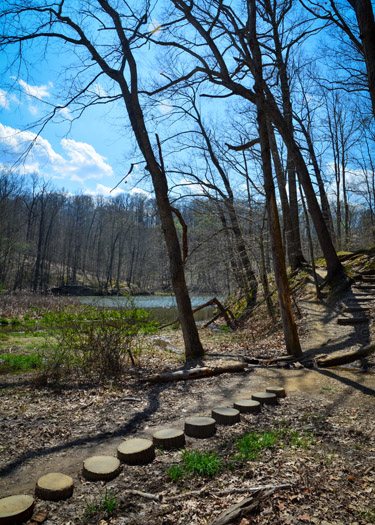 Trail 8 around Ogle Lake in Brown County State Park.