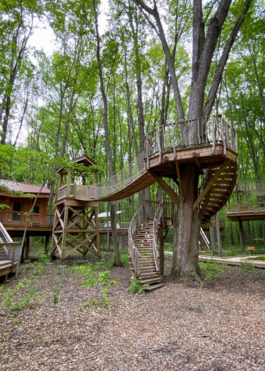 Common Treehouse at the Cannaley Treehouse Village.