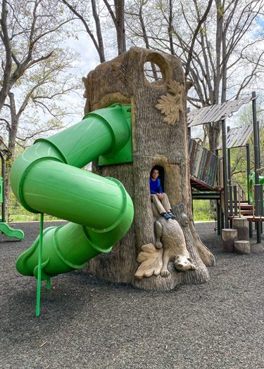 Boy sitting inside a play structure resembling a tree trunk.