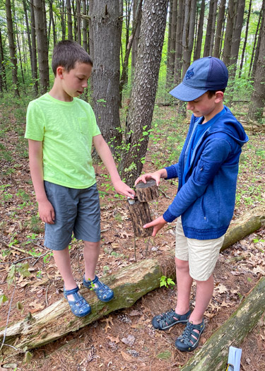 Two boys opening a geocache at Oak Openings.
